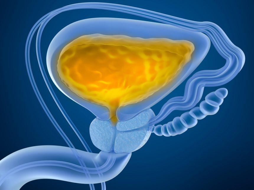 full bladder