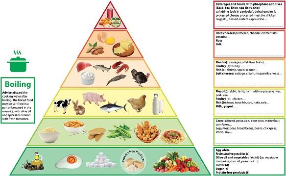 Phosphorus Pyramid - D'Alessandro, C, et al. BMC Nephrology, 2015.
