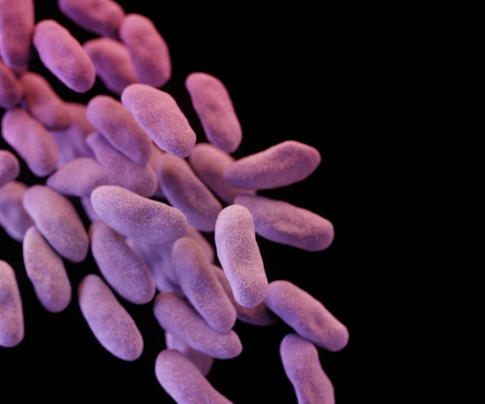 Abx-Resistant Enterobacteriaceae Tied to Clinical Failure in