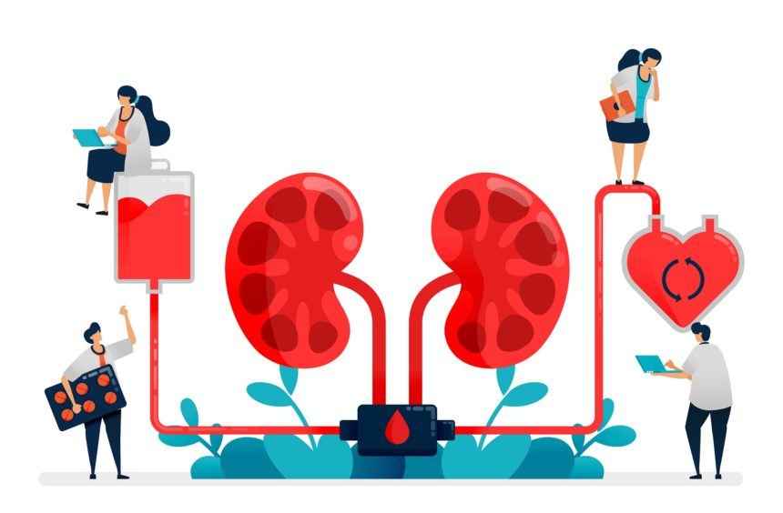 Renal replacement therapy concept illustration