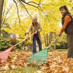 Hispanic couple raking autumn leaves